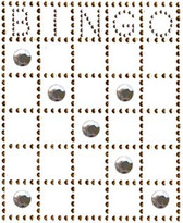 Ovrs201 - Bingo Card