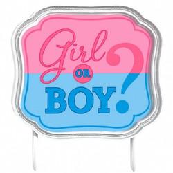 Girl or Boy? Gender Reveal Baby Shower Cake Topper