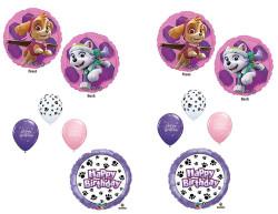 PAW PATROL Girl SKYE & EVEREST 10 PC. Balloons Decoration