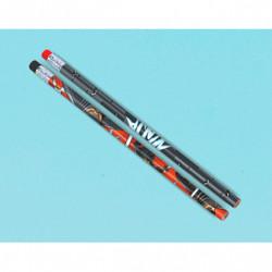 Ninja Pencil Favors (12 pack)