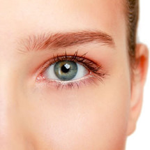 Waxing - Full Eye Brow Service