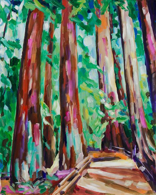 Muir Woods Pathway Print