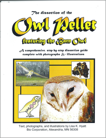 Owl Pellet Dissection Reference Guide
