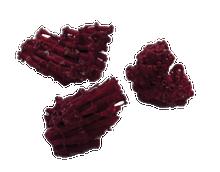 Organ-Pipe Coral