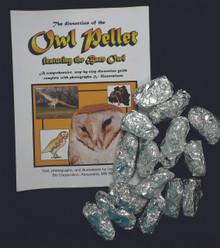 Class Set - Owl Pellet