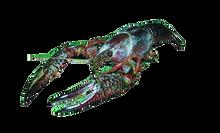 "3"" - 4"" Plain Crayfish, Pail"
