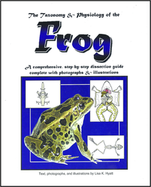 Frog Dissection Reference Guide