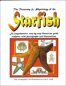 Starfish Dissection Reference Guide