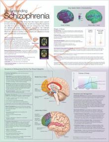 Reference Chart - Understanding Schizophrenia