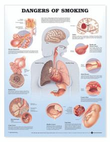 Reference Chart - Dangers of Smoking