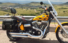 David's '11 Harley-Davidson Dyna Wide Glide w/ Motorcycle Leather Studded Saddlebags