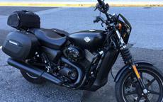 Dohawk's Harley-Davidson Street 750 w/ Hard Series Saddlebags