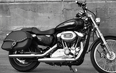 David Brommer's 2008 Harley-Davidson Motorcycle Saddlebags
