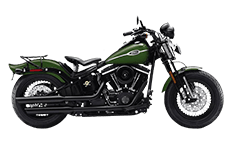 Softail Cross Bones FLSTSB Saddlebags