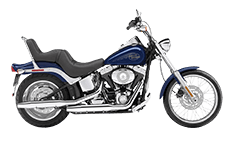 Softail Custom FXSTC Saddlebags