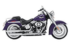 Softail Deluxe FLSTN Saddlebags