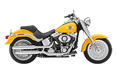 Softail Fatboy FLSTF Saddlebags