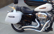 Mitch's Harley-Davidson Sportster w/ Lamellar Hard Saddlebags