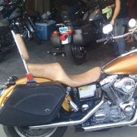 IS jenkins 2000 harley dyna Super Glide fxd