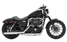 Sportster 883 Iron Saddlebags
