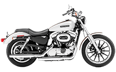 Sportster 1200 Low Saddlebags