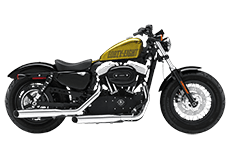 Sportster Forty Eight Saddlebags