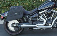 Ray's Yamaha Raider w/ Warrior Series Saddlebags
