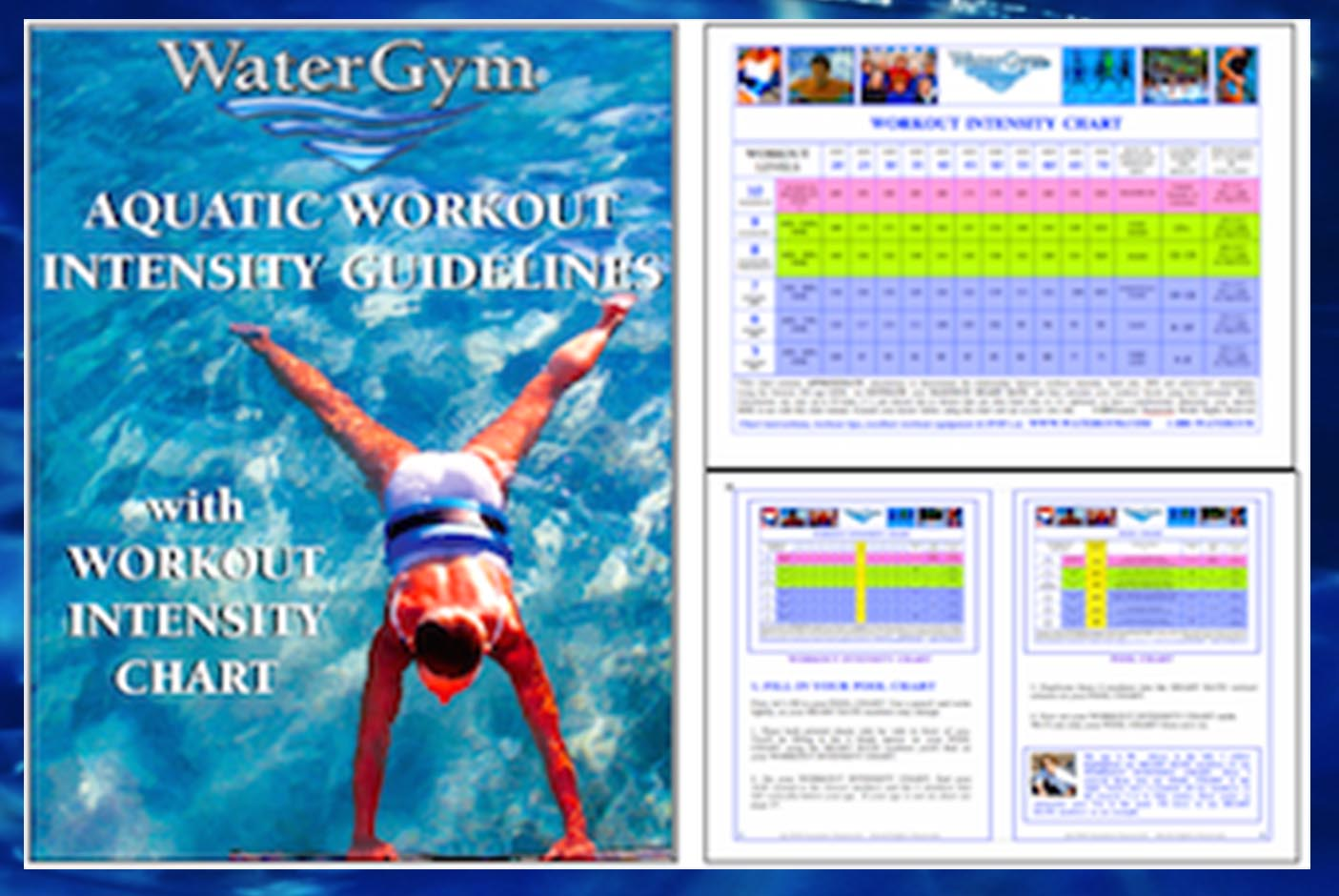 Free water aerobics exercise charts and live videos watergym calorie burning chart geenschuldenfo Images