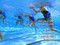 Aqua Aerobics DVD to Lose Weight Float Belt