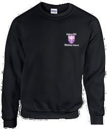 Embroidered Crew Neck Sweatshirt