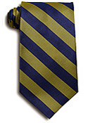 Copy of Navy & Gold Striped Tie (1004)