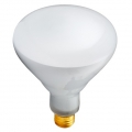 Incandescent R40 Medium Base