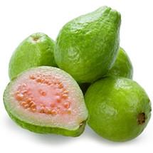 Guava (TDA)