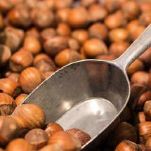 Nut Hazelnut (MB)