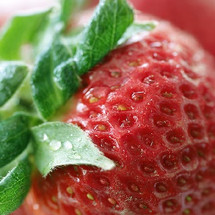 Shisha Strawberry (IW)