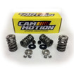 """LS .660"""" Premium Polished Double Spring Kit With Titanium Retainers (VSK143201)"""