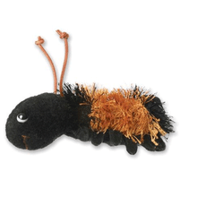 Black Furry Caterpillar
