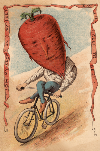 Beet Vegetable Rider Poster