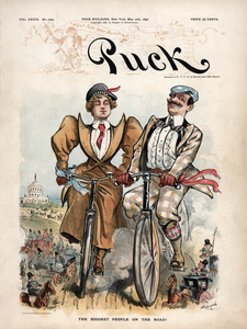Puck Magazine - May 20, 1896 Poster