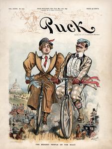 Puck Magazine - May 20, 1896 Poster