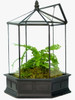 H Potter Six Sided Terrarium