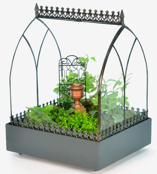 Glass Vault Wardian Case Terrarium