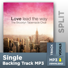 Take Me As I Am (Single Split Track MP3)