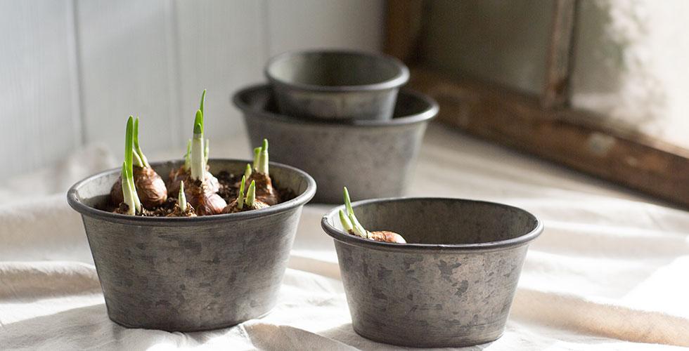Zinc Oval Planters