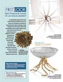 firstlook-cover.jpg