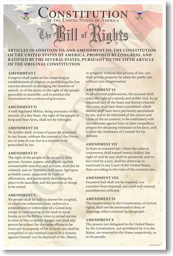 Constitution of the United States - The Bill of Rights - Classroom American History PosterEnvy Poster