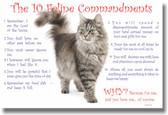 10 Feline Commandments