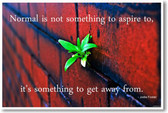 """""""Normal Is Not Something To Aspire To"""" Jodie Foster - NEW Classroom Motivational Inspirational POSTER"""