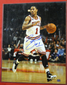 DERRICK ROSE AUTOGRAPHED CHICAGO BULLS 16X20 PHOTO AAA W