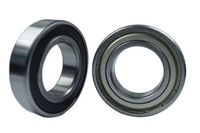 6006-2RS 6006-ZZ Radial Ball Bearing 30X55X13